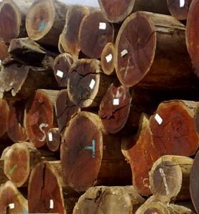 Sawn timber - maxtrader eu™ - Products, Companies, Trade
